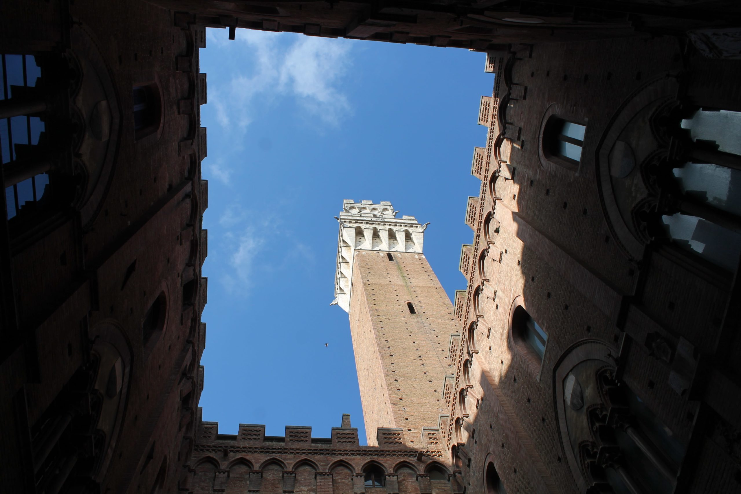 Palazzo Pubblico and Sienese art.